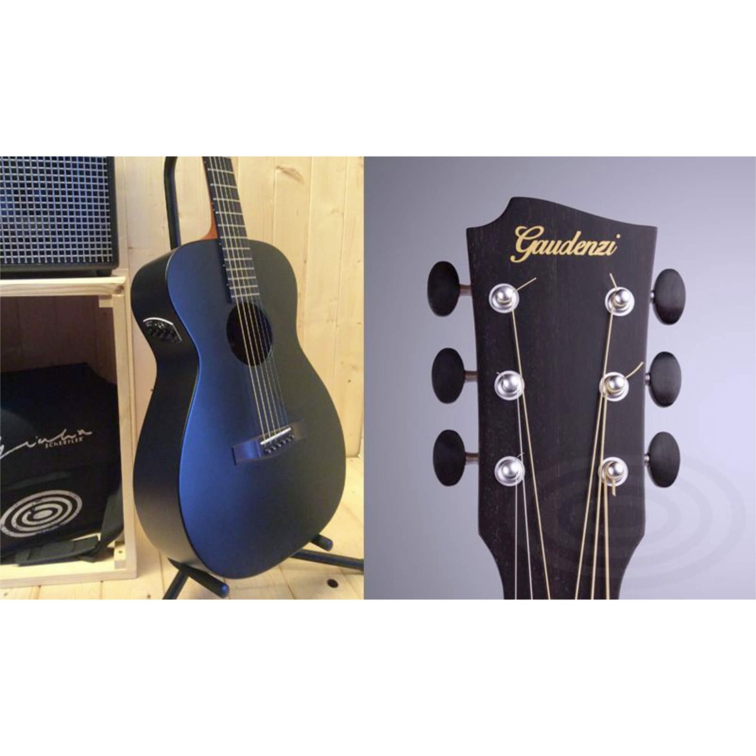 gaudenzi guitars